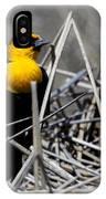 Yellow-headed Blackbird IPhone Case