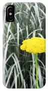 Yellow Immortelle Flower IPhone Case