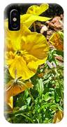 Yellow Flower In The Sun IPhone Case