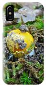 Yellow Patches Baby Mushroom - Amanita Muscaria IPhone Case