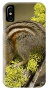 Yellow Pine Chipmunk IPhone Case