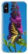 Yellow Tiger Swallowtail Papilio Glaucus Butterfly  IPhone Case