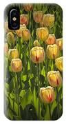 Yellow Tulip Flowers On Windmill Island In Holland Michigan IPhone Case