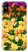 Yellow Tulips In Bloom IPhone Case