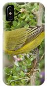 Yellow Warbler Hen IPhone Case