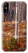 Yellowstone Aspens IPhone Case