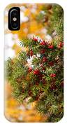 Taxus Baccata Or Yew Red Fruits On Twig  IPhone Case