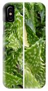 Young Aloe In Stereo IPhone Case