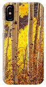 Young And Old Aspens IPhone Case