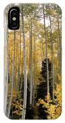 Young Aspens IPhone Case