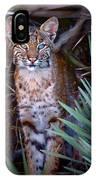 Young Bobcat IPhone Case