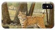 Young Bobcat    IPhone X Case