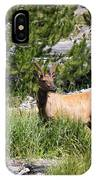 Young Bull Elk - Yellowstone National Park - Wyoming IPhone Case