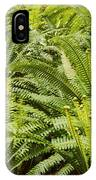 Young Fiddleheads IPhone Case