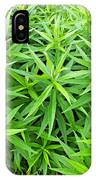 Young Goldenrod Before Blossoms IPhone Case