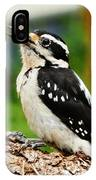 Young Hairy Woodpecker IPhone Case