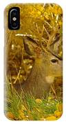 Young Male Buck IPhone Case