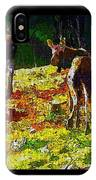 Young Moose In Autumn IPhone Case