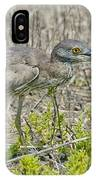 Young Yellow-crowned Night Heron IPhone Case