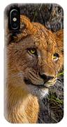 Your Lioness IPhone Case