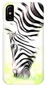 Zebra Art IPhone Case