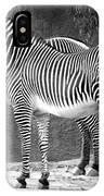Zebra Black And White IPhone Case