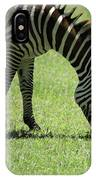 Zebra Eating Grass IPhone Case