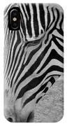 Zebra Face IPhone Case
