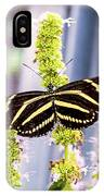 Zebra II IPhone Case
