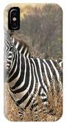 Zebra In Serengeti IPhone Case