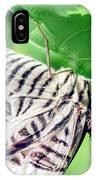 Zebra Long-wing Close-up IPhone Case