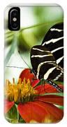 Zebra Longwing 2 IPhone Case
