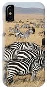 Zebra Migration Maasai Mara Kenya IPhone Case