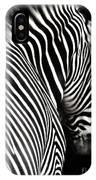 Zebra On Black IPhone Case