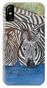 Zebra Pool IPhone Case