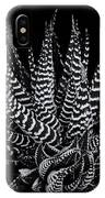 Zebra Succulent IPhone Case