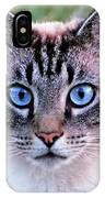 Zing The Cat Looking At Us IPhone Case
