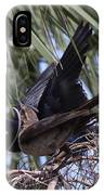 Boat-tailed Grackle - Quiscalus Major IPhone Case