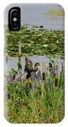 Swan And The Duck's IPhone Case