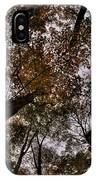0014 Letchworth State Park Series IPhone Case