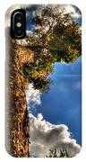 002 Reaching For The Sky IPhone Case