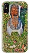 06 Grey Squirrel Sciurus Carolinensis Series IPhone Case