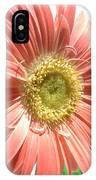 0620a-003 IPhone Case