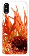 0687c-019 IPhone Case