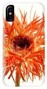 0687c-025 IPhone Case