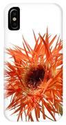 0688c-010 IPhone Case