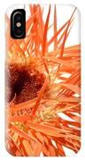 0689c-002 IPhone Case