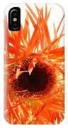 0690c-004 IPhone Case