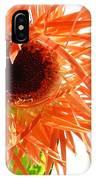 0690c-006 IPhone Case