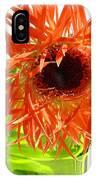 0690c-014 IPhone Case